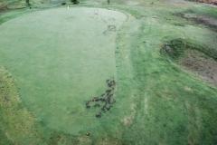 Skyway-Golf-Maintance-21-of-31